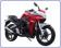 ico-motocikl-racer-skyway-rc-250-cs